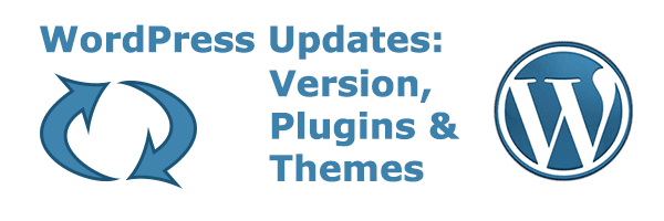 WordPress Updates: Version, Plugins, and Themes 1