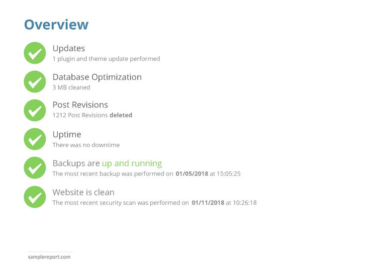 sample website report - overview