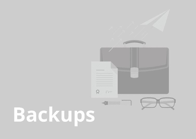 sample website report - backups